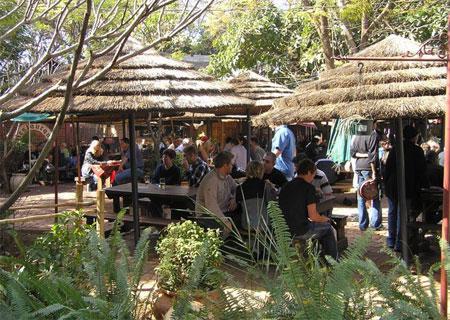 Welwitschia Market Harties