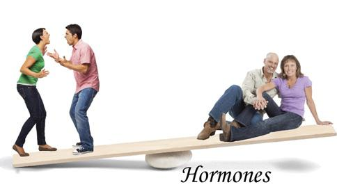 Hormone Balance by Dr Ally