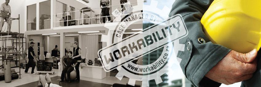 Workability Program