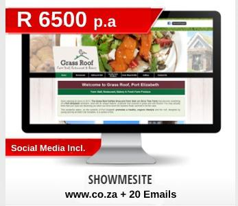 Affordable Website Design Ballito SEO included