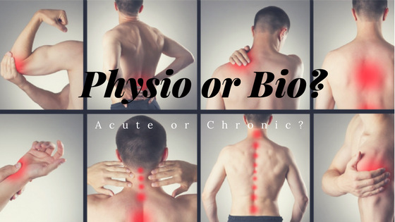When to use a physiotherapist or biokineticist