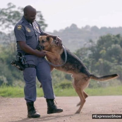 k9-unit-cared-by-service-master-sa