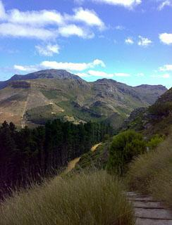 Bridal path towards Constantia Nek