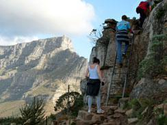 The Ladder - Lions Head Hiking Trail, Cape Town