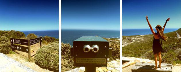 Views from Cape Point