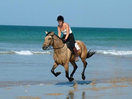Horse riding on Noordhoek Beach