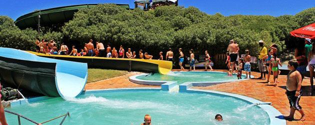 Kids activities cape town things to do with kids ct - Butterfly world com table tennis ...