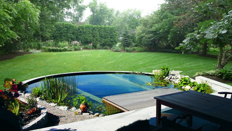 Natures garden pools and ponds natural swimming pools for Garden town pool