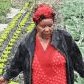 Khayelitsha farmer harvests award