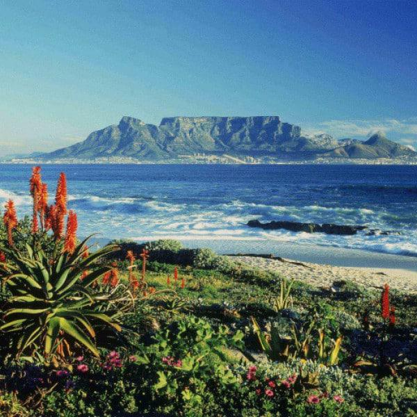 Not so touristy things in Cape Town