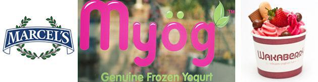frozen-yogurt-copy