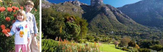 kirstenbosch-copy
