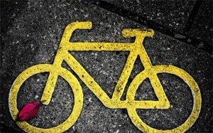 Bicycle Mayor Programme launched