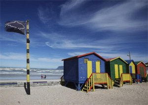 Cape Town showcases shark spotting's role