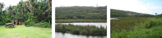 Bluff Nature Reserve