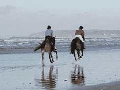 Fun Things to Do this Easter on the Dolphin Coast