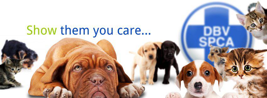 ELSPCA   East London SPCA   Animal rescue