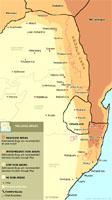 Malaria-Map-icon
