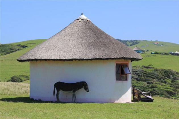 Rural Xhosa Hut - World Nomads