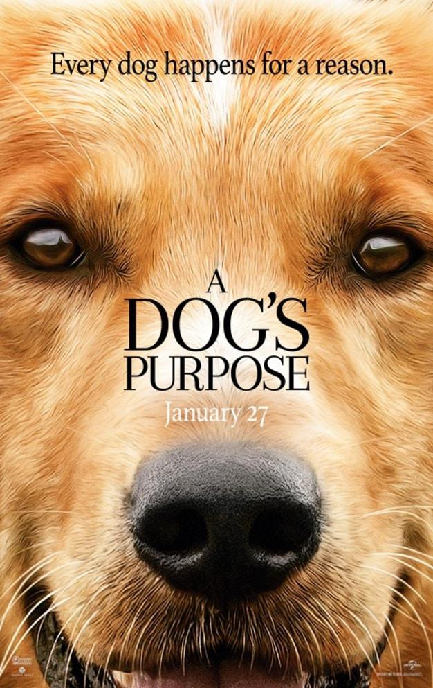 What Times Are A Dog S Purpose Showing On February
