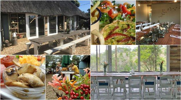 2-restaurant-collage