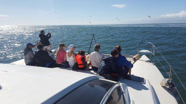Ocean Cruise on Inyathi