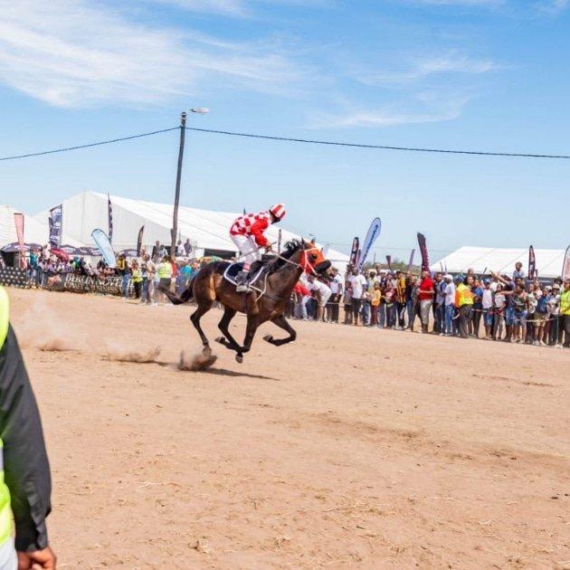 Traditional Horse Racing - Berlin November