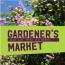 Virtual Gardener