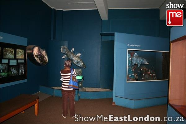 The East London Museum East London