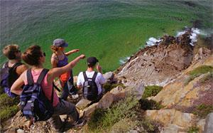 A group of hikers watching the seal colony from above