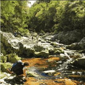 Kleinbos River