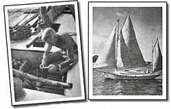 Wylo was built by Wightman and sailed to the caribbean.