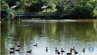 Amanzimtoti Bird Sanctuary