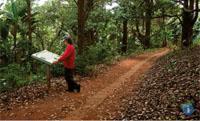 Skyline Nature Reserve