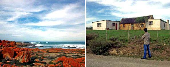 * Orange oxides lend colour and contrast to the seascapes. * The work of hardy Boer pioneers near Stilbaai.