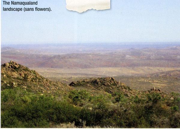 The Namaqualand Landscape