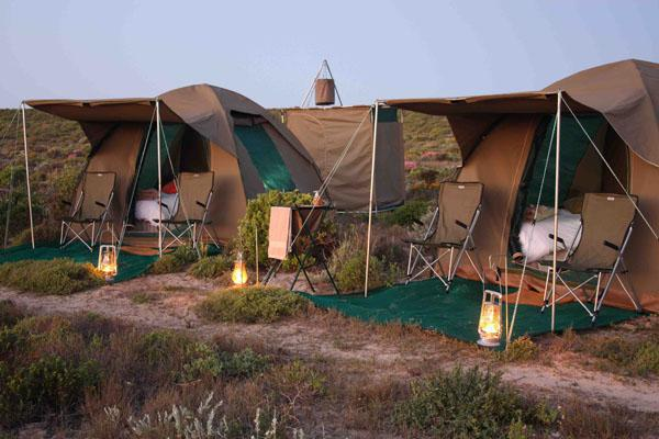 Chiefs luxury mobile safari camp