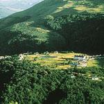 Mount Sheba lodge, in the gorgeous forested region of the reserve