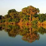 Beautiful scene of the Shingwedzi River from Shingwedzi Rest Camp, Kruger National Park