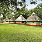 Neatly laid out rondavels at Skukuza Rest Camp in the Kruger National Park