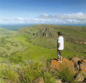 Lenong Viewpoint, in Marakele National Park, is a great place to spot Cape vultures soaring above the hills.