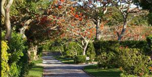 Mendolino Caravan Park and Chalets, Port Alfred