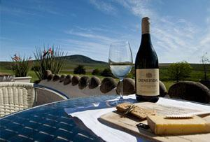 Diemersdal Wine Estate, Durbanville, Cape Town