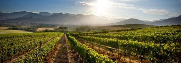 L'Ormarins Wine Estate, Franschhoek, Western Cape