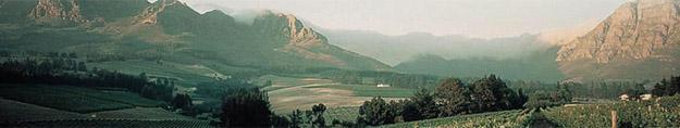 Neethlingshof Wine Estate, Stellenbosch, Western Cape