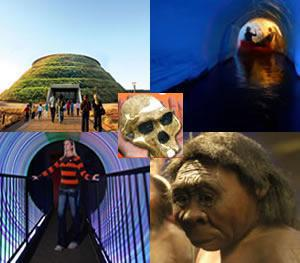 Cradle of Humankind Museum