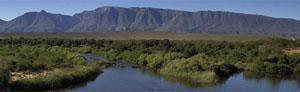 Bontebok National Park, Swellendam