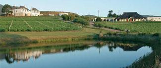 Bouchard Finlayson Winery, Hermanus, Western Cape