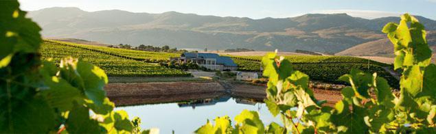 Creation Wine Estate, Hermanus Wine Route, Western Cape