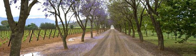 De Wetshof Wine Estate, Robertson, Western Cape